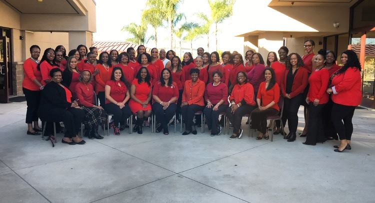 Alpha Kappa Alpha Sorority, Inc., Mu Epsilon Omega Chapter - Pink Goes Red